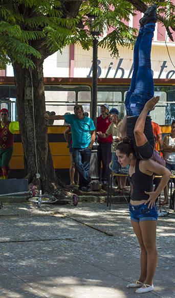 Circo3-Verano-Matanzas