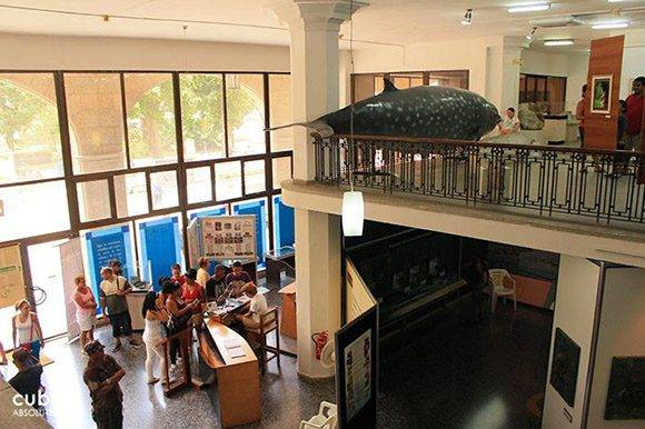 Museo de Historia Natural de La Habana. Foto: Cuba Absolutely.