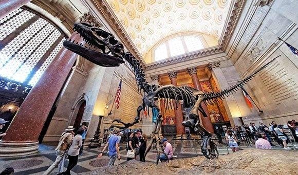 Museo de Historia Natural de Nueva York.