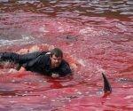 Una de las fotos compartidas en redes sociales. El mar es un baño de sangre. Foto: Norðlýsið