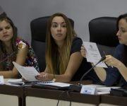 comisiones asamblea nacional (9)