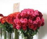 flores-comercioexteriorecuador