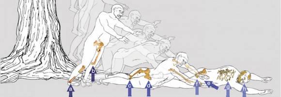 Una reconstrucción de cómo pudo ser la caída - Imagen Kappelman et al.