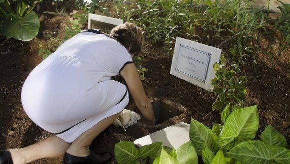 Lola Calviño, viuda de Julio deposita el ánfora. Foto: Alexis Rodríguez