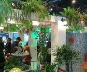 Cuba en la Feria Internacional de Turismo de Buenos Aires1