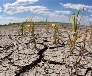 Pese a las lluvias recientes, en Cuba persiste la sequía