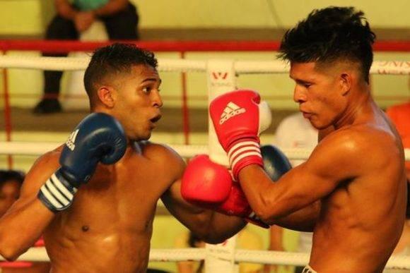 Serie Nacional de Boxeo. Foto: Armando Hernández / JIT