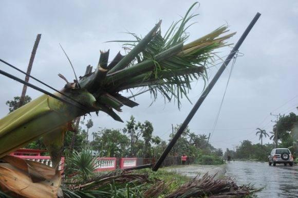 Los vientos hicieron varios estragos en este territorio