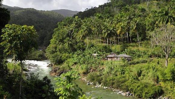 Parque Nacional Alejandro Humbolt. Foto: Archivo.