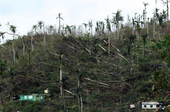 almas arrasadas hoy, jueves 6 de octubre de 2016, en Baracoa, Cuba, dos días después del paso del huracán Matthew. Foto: Alejandro Ernesto/ EFE