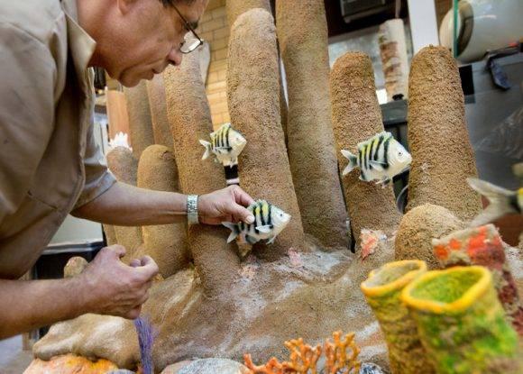 """Genaro Mauricio trabajando en una versión 3-D de un arrecife de coral por el Museo Americano de Historia Natural exposición """"iCuba!"""" Crédito Sara Krulwich / The New York Times"""