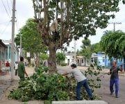 poda de arboles ante el paso del huracan