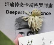 A chrysanthemum lay on an image of the late Cuban President Fidel Castro outside the Cuban embassy in Beijing, Tuesday, Nov. 29, 2016. After his band of bearded rebels won power in 1959, Castro embarked on a victory tour delivering speeches to cheering crowds stretching from the eastern Cuban city of Santiago to Havana. Starting Wednesday, his ashes will retrace that journey in a solemn procession to his final resting spot. (AP Photo/Andy Wong)