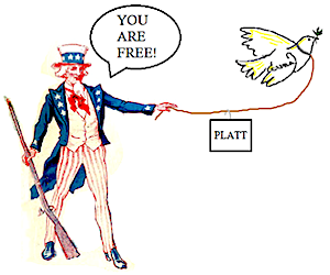 enmienda-platt
