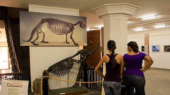 natural history museum in old havana© Cuba Absolutely, 2014