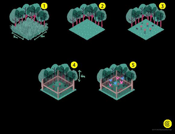mariposario-infografia