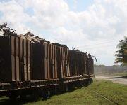 Un tren lleno de chatarra entra en la Antillna de Acero. Foto: José Raúl Concepción/ Cubadebate.