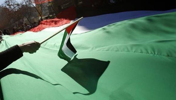 Manifestantes sostienen una bandera palestina gigante. Foto: EFE.