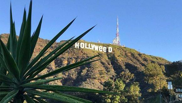 Cambian el famoso cartel de Hollywood por 'Hollyweed'