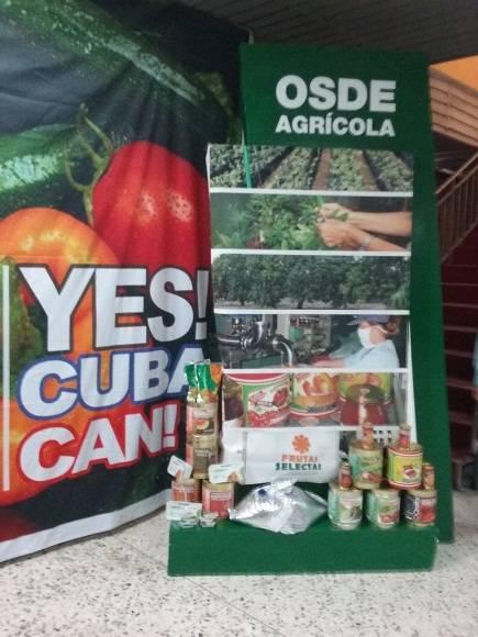 Exposición de productos que pueden sustituir importaciones o ser exportados./ Foto: Susana Tesoro.