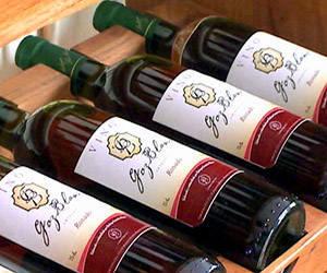 vinos-bayamo