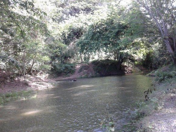 El rio Chaparra en el municipio Jesús Menéndez, Las Tunas. Foto: Yuslaidys Avila Puig / Cubadebate.