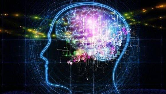 Realza revista científica Nature, Proyecto Cubano de Mapeo del Cerebro Humano