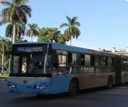 p16-guaguas