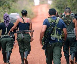 Desarme Colombia