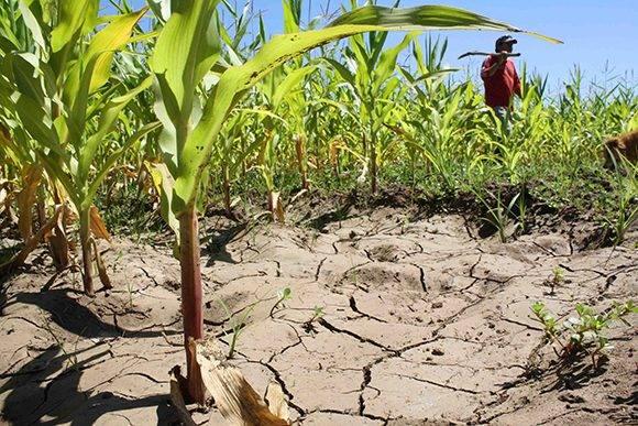 El clima es solo un factor que determina la disponibilidad del agua. Foto: Agriculturers.