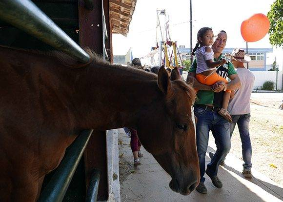 Los caballos entre los más atractivo de la XX de la Feria Internacional Agroindustrial Alimentaria, Fiagrop, 2017. Foto: Ismael Francisco/Cubadebate.