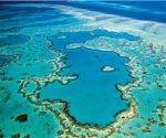 Gran Barrera de Coral en Australia. Foto: Archivo