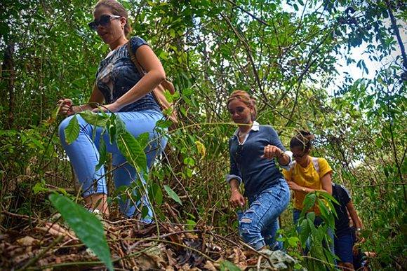 La Cueva de Sao Corona, sitio escogido en 1895 por el general Antonio Maceo para reeditar el periódico El Cubano Libre, en el municipio de Cueto, fue centro de una excursión realizada por jóvenes periodistas de Holguín, Cuba, el 9 de marzo de 2017, en saludo al Día de la Prensa Cubana.ACN FOTO/Juan Pablo CARRERAS