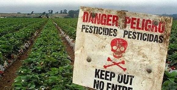 Pesticidas provocan 200 mil muertes cada año, alerta ONU.