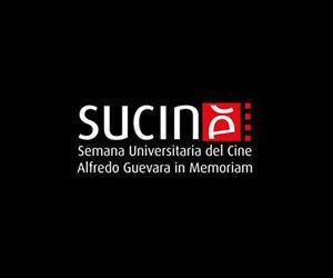 sucine-2017