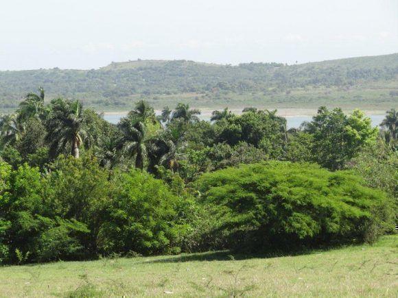 Remanso de la Presa Cautillo Aguas Arriba, donde comienza esta. Imagen tomada desde la comunidad de Arroyo Blanco, Guisa, Granma. Foto: Luis Alberto Santí Díaz / Cubadebate