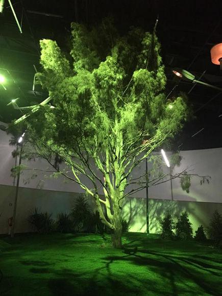 arbol-con-luz-verde-carlos-garaicoa-maat