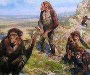 Los primeros homínidos vivieron en Europa en vez de Africa oriental. Foto: Tomada de Prensa Latina.