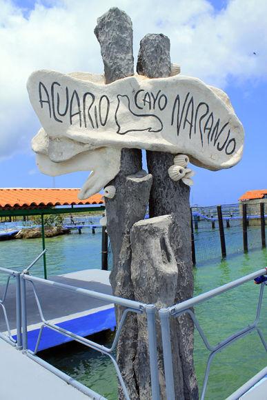 Acuario Bahía de Naranjo, Holguín. Fpto: Daylén Vega / Cubadebate