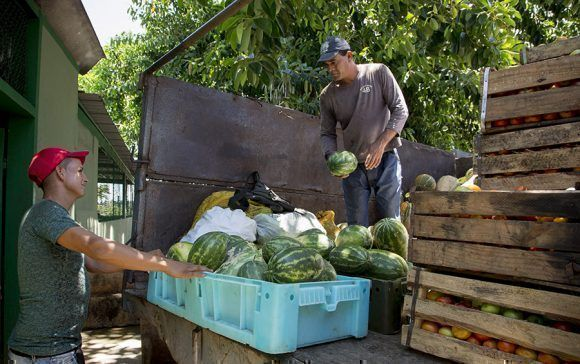 Descarga de mercancias en Mercado el Pimiento. Santa Clara. Foto: Ismael Francisco/Cubadebate.