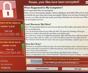 El programa malicioso usado en el 'ransomware' exige a contrarreloj un pago por la liberación del sitio.