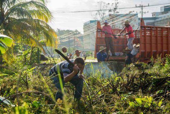 Recogida de deshechos y limpieza de áreas durante el trabajo voluntario de embellecimiento de la ciudad, en saludo al 26 de julio, en Pinar del Río en 26, Cuba, 25 de junio de 2017. ACN FOTO/Rafael FERNÁNDEZ ROSELL
