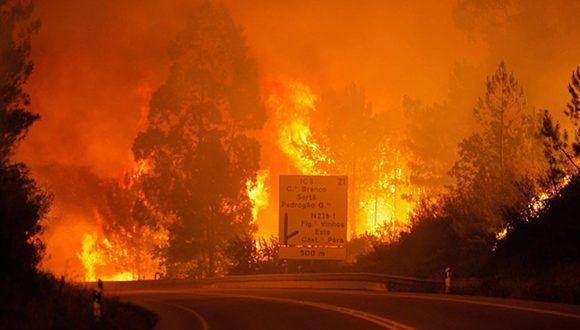 Identificadas 24 de las 62 víctimas mortales del incendio de Portugal