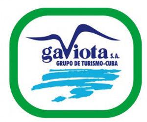 logo-grupo-gaviota