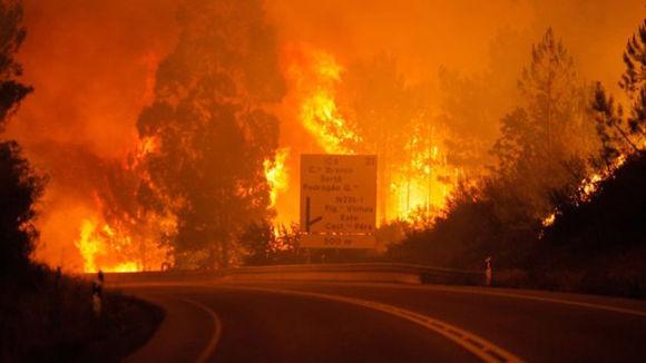 Muchos de los que murieron se encontraban en sus vehículos intentando escapar las llamas. Foto: EPA.