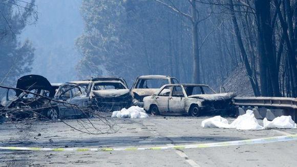 El primer ministro advirtió que la cifra de muertos podría elevarse. Foto: EPA.