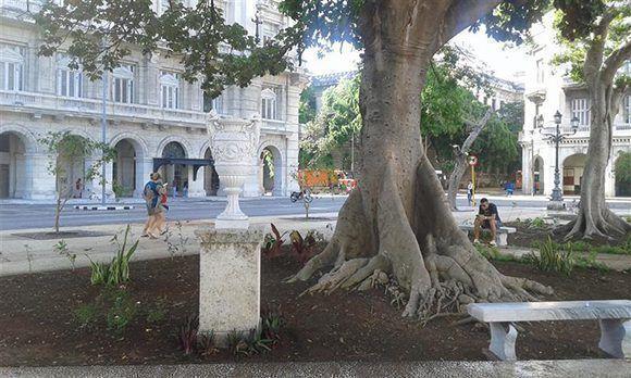 Se respeta la vegetación del parque planificada en 1960 por el arquitecto Eugenio Batista. Foto tomada de Habana Radio.