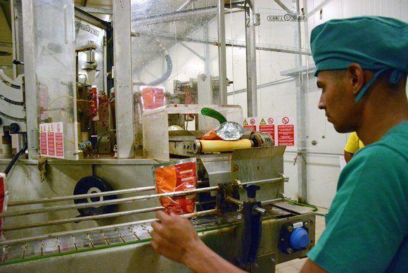 Labores en la línea de embase para pasta de tomate, instalada recientemente en el combinado industrial de Ceballos, en Ciego de Ávila.  Foto: ACN/  Osvaldo Gutiérrez.