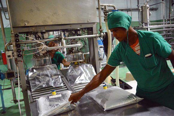 Labores en la línea de embase, para concentrado de jugos, en el combinado industrial de Ceballos, en Ciego de Ávila. Foto: ACN/  Osvaldo Gutiérrez.