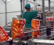 Labores en la línea de embase para pasta de puré de tomate, en el combinado industrial de Ceballos. Foto: ACN/  Osvaldo Gutiérrez.